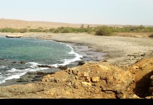 Fontona, grön oas och privat öde strand på Sal, Kap Verde