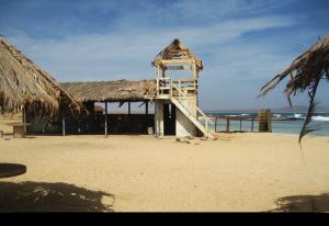 Praia Afonso, privat öde strand och källa med tropiska fiskar, Kap Verde / Santa Maria