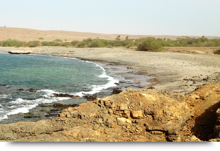 Info about Fontona, a green oasis in the desert of Sal, Cape Verde islands, empty beach and hidden treasure